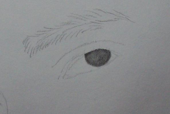 Fazendo o olho-3